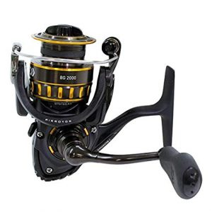 Daiwa BG Spinning Reel review