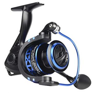 Kastking Summer and Centron Spinning Reel review