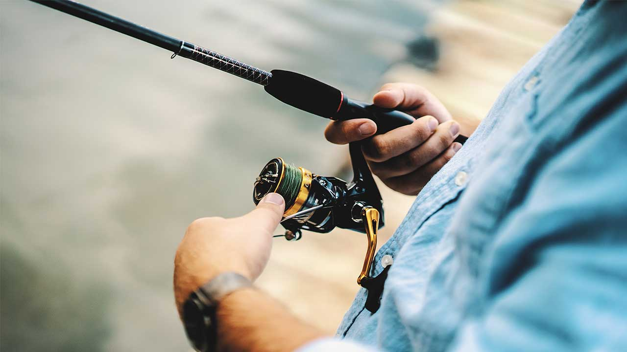 Best Musky Reel Under $100