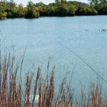 Best Places to Fish in Illinois