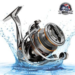 Cadence CS8 Spinning Reel review