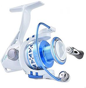Kast-King Summer and Centron Spinning Reel review