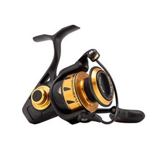 Penn SpinFisher VI Spinning Reel review