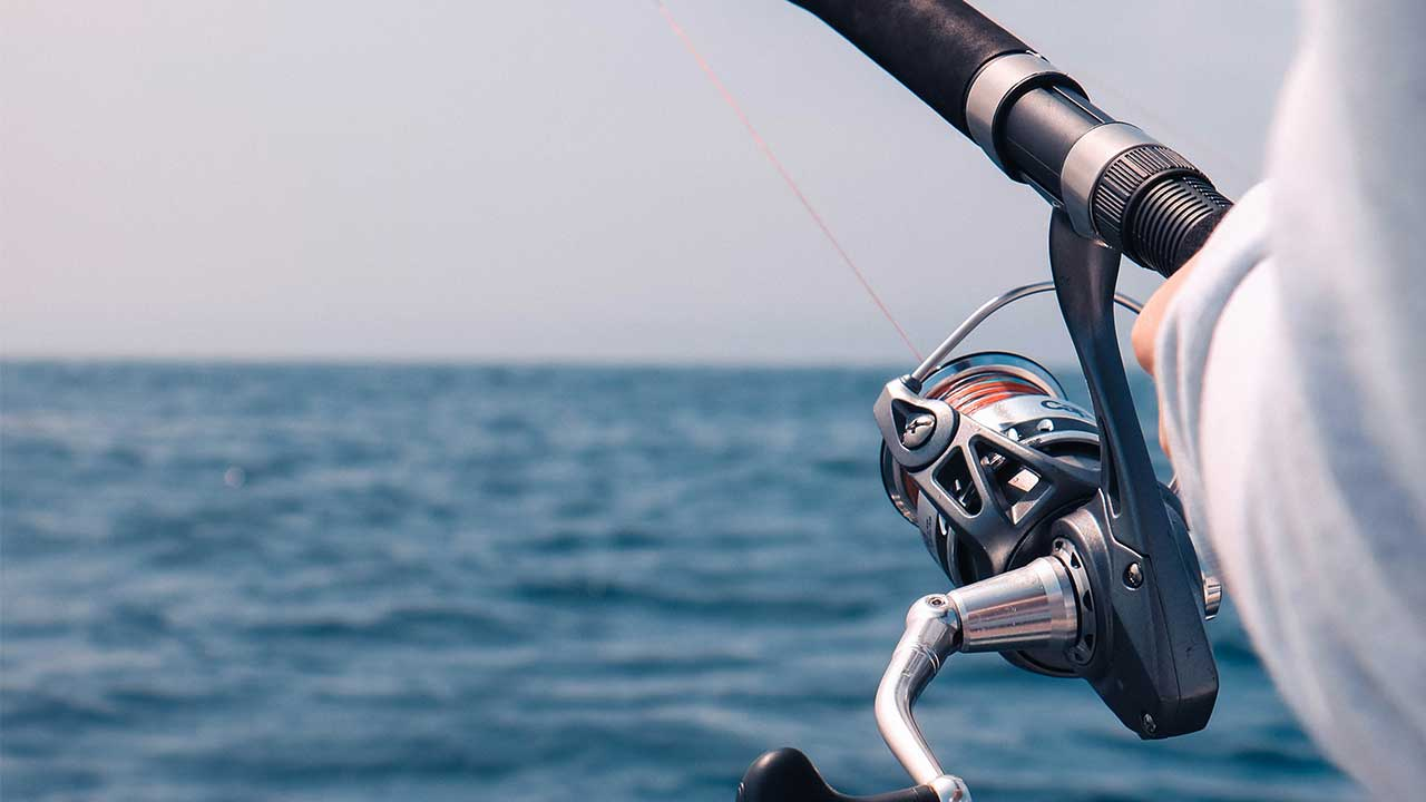 Best Inshore Saltwater Spinning Reel