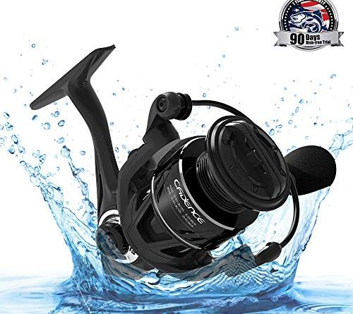 Cadence Spinning Reel for Inshore Saltwater Fishing review