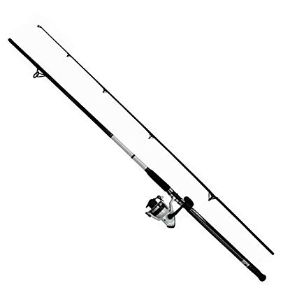 Daiwa D-Wave Saltwater Spinning Combo review