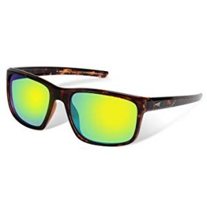 KastKing Toccoa - Polarized Sports Sunglasses for Men and Women review