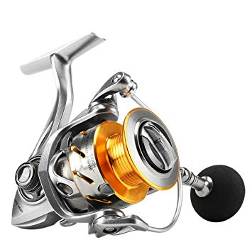 SeaKnight Rapid Saltwater Spinning Reel review