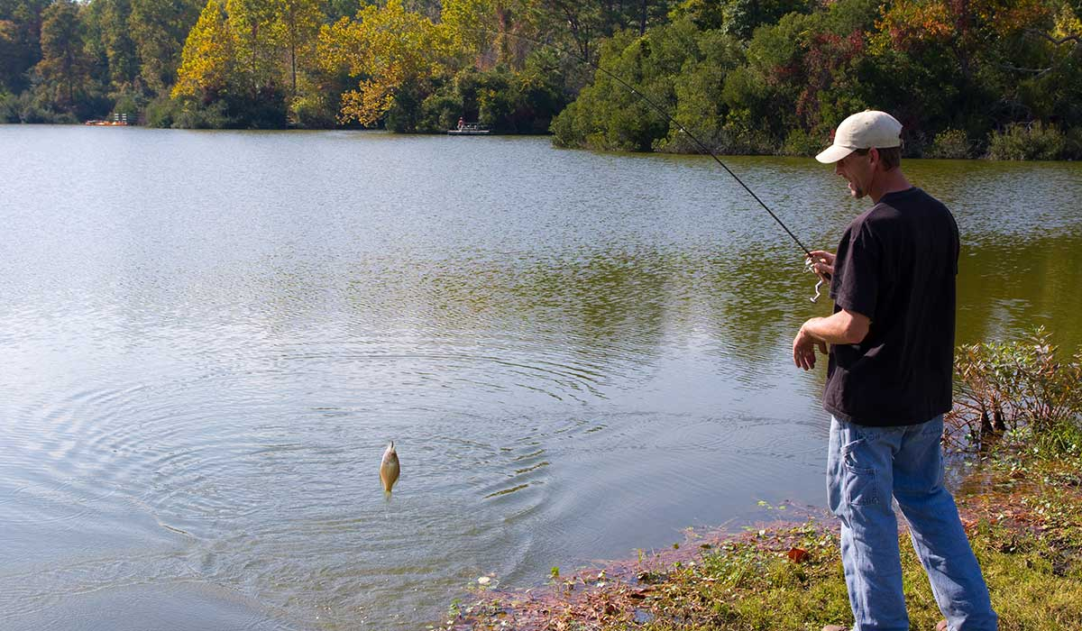 best time to fish for crappie